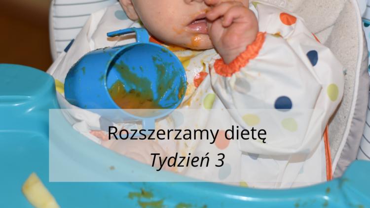 Rozszerzanie diety tydzień 3 (raczkujac.pl)