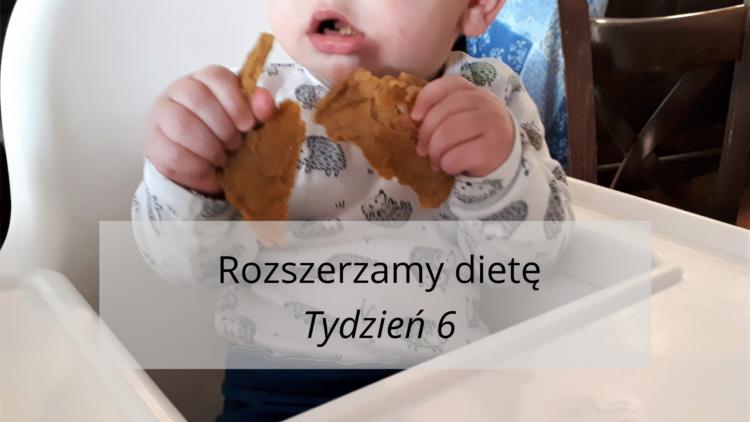 Rozszerzanie diety tydzień 6 (raczkujac.pl)