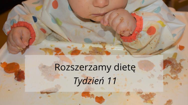 Rozszerzanie diety tydzień 11 (raczkujac.pl)