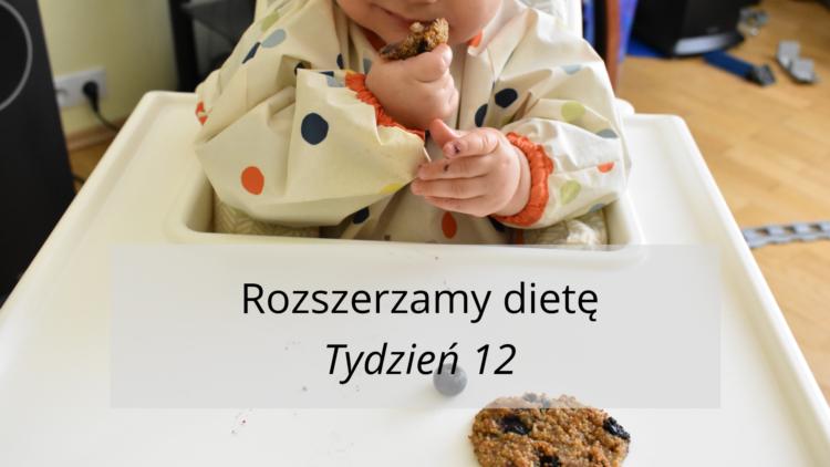 Rozszerzanie diety tydzień 12 (raczkujac.pl)