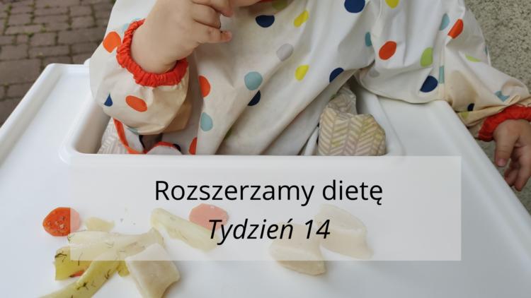 Rozszerzanie diety tydzień 14 (raczkujac.pl)