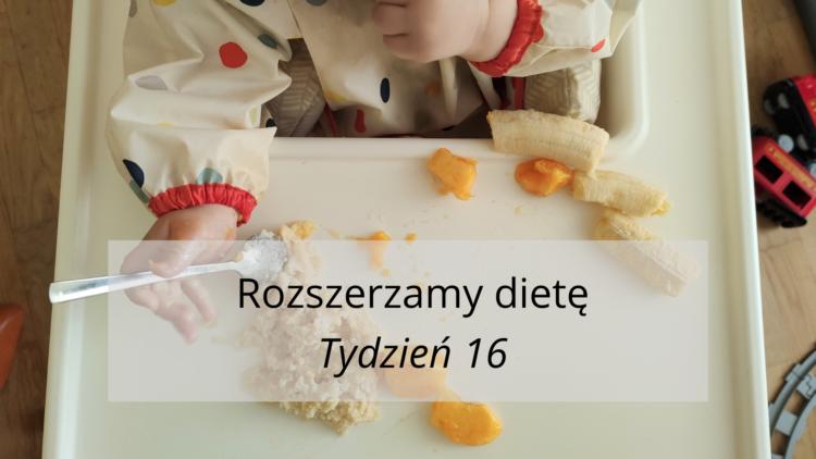 Rozszerzanie diety tydzień 16 (raczkujac.pl)