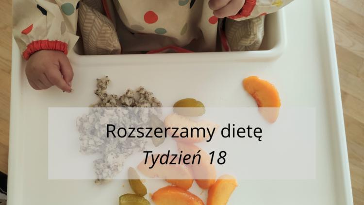 Rozszerzanie diety tydzień 18 (raczkujac.pl)